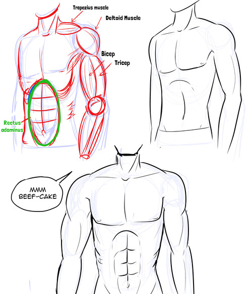 500x584 How To Draw Manga How To Draw Manga Male Bodies