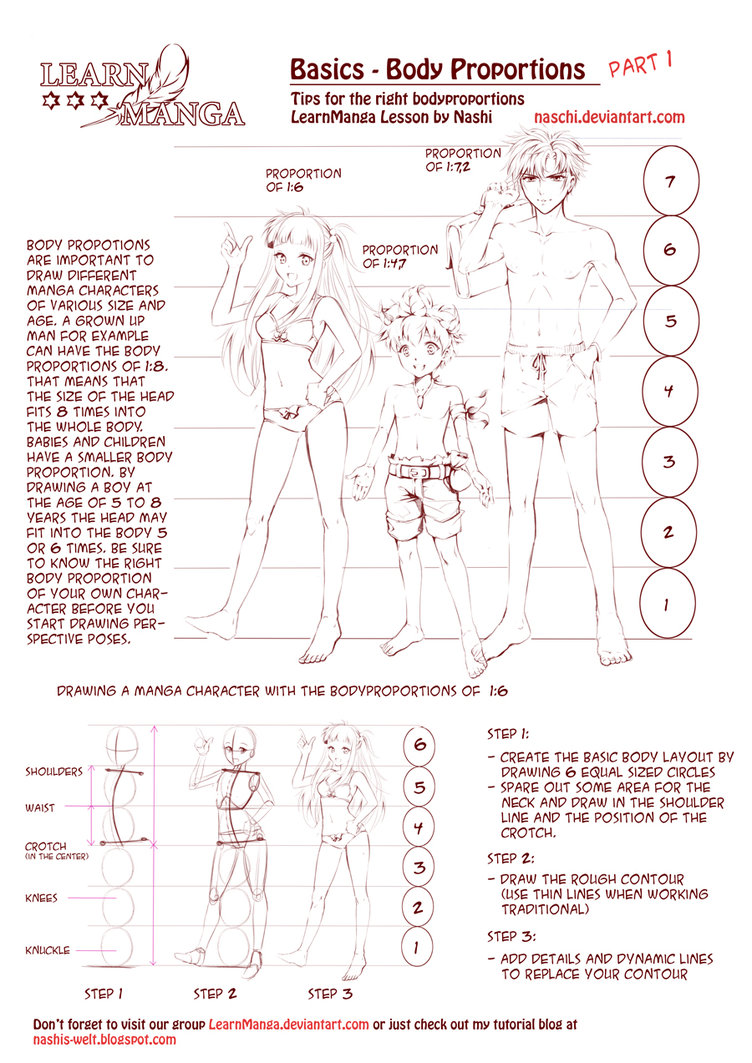 752x1063 Learn Manga Body Proportions By Naschi