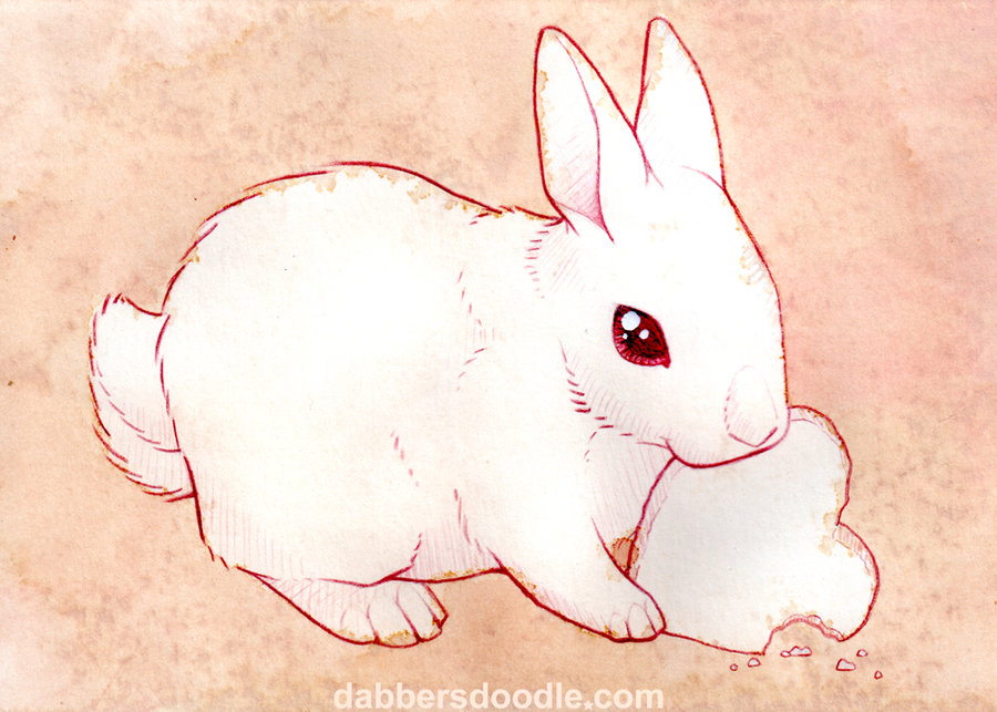 Anime Bunny Drawing At Getdrawings Free Download