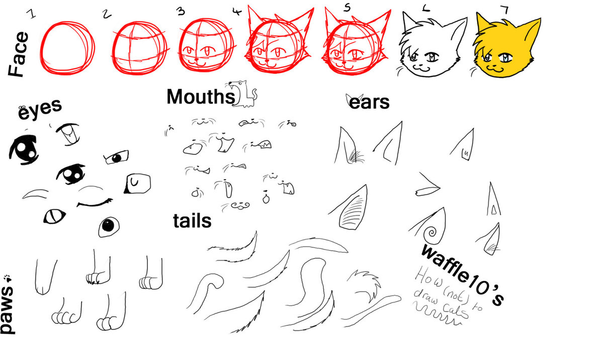 1191x670 How To Draw Those Anime Cats By Waffle10