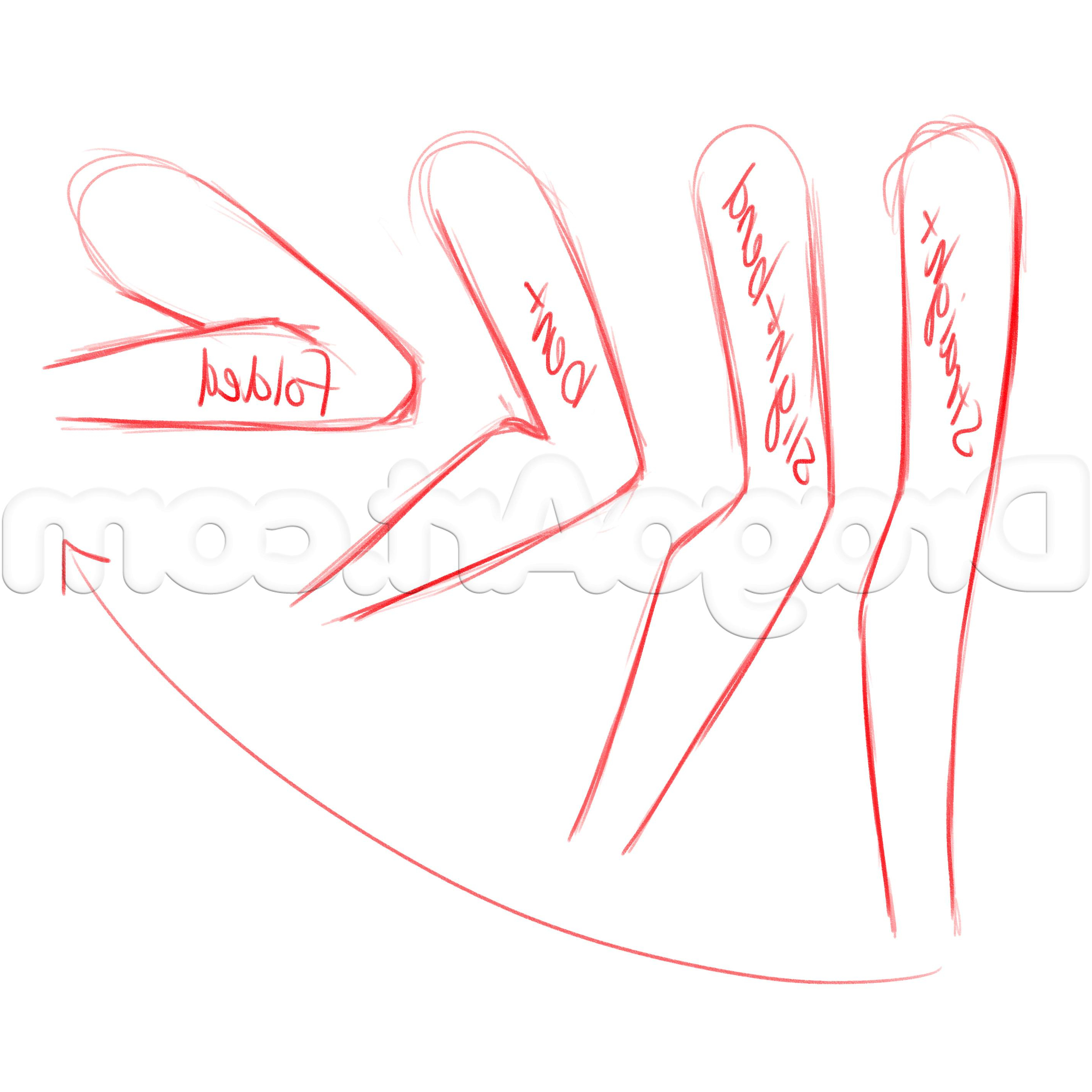 2844x2844 Draw Anime Female Hands Step By Step Drawing Hands And Tips  By