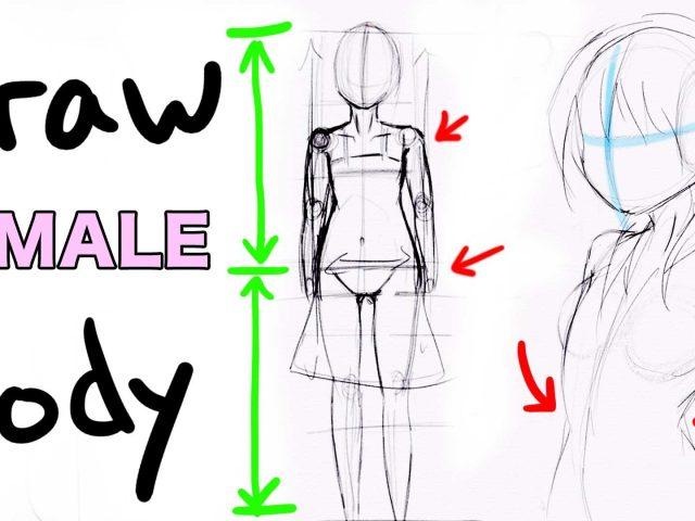 640x480 Draw Anime Girl Body Draw A Female Body Mangaanime Girl Style
