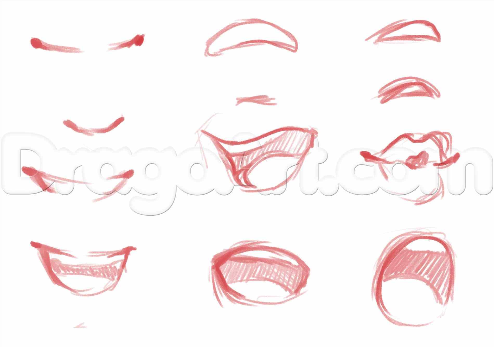 1899x1334 By Step Faces Heads Girl How To Draw Anime Nose Step By Step Faces