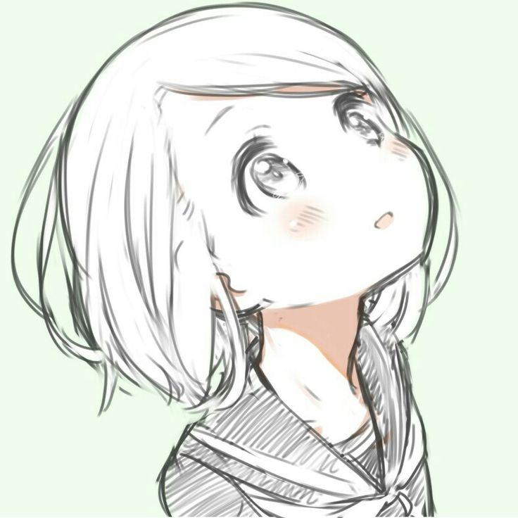 736x736 Photos Anime Girl Sketches,