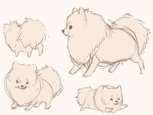 Amazing Tiny Anime Adorable Dog - anime-puppy-drawing-60  2018_921242  .jpg
