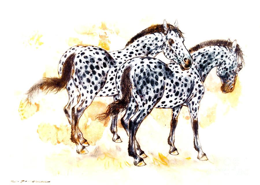 900x641 Pair Of Appaloosa Horses With Leopard Complex Drawing By Kurt Tessmann