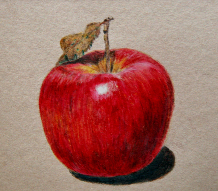 900x790 Apple Drawing By Emueller