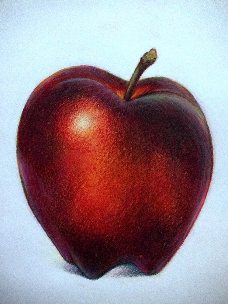 750x1000 Lauren Yurkovich Food Illustration