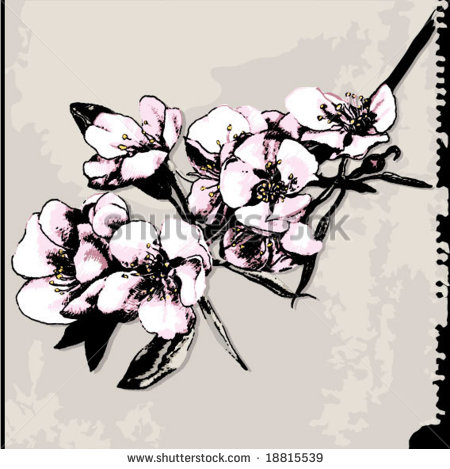 450x469 17 Apple Blossom Vector Images