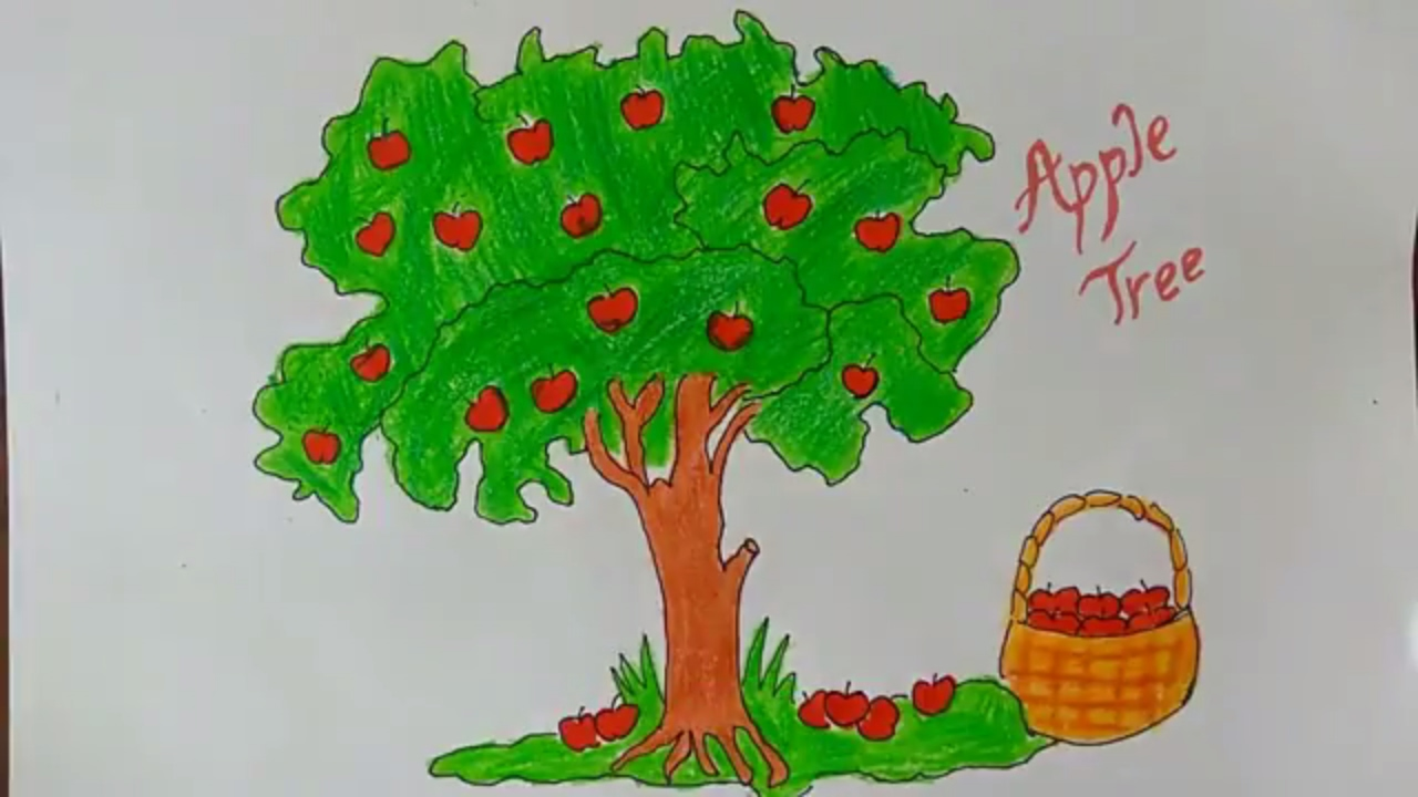 1280x720 How To Draw An Apple Tree, How To Draw A Cartoon Apple Tree, How