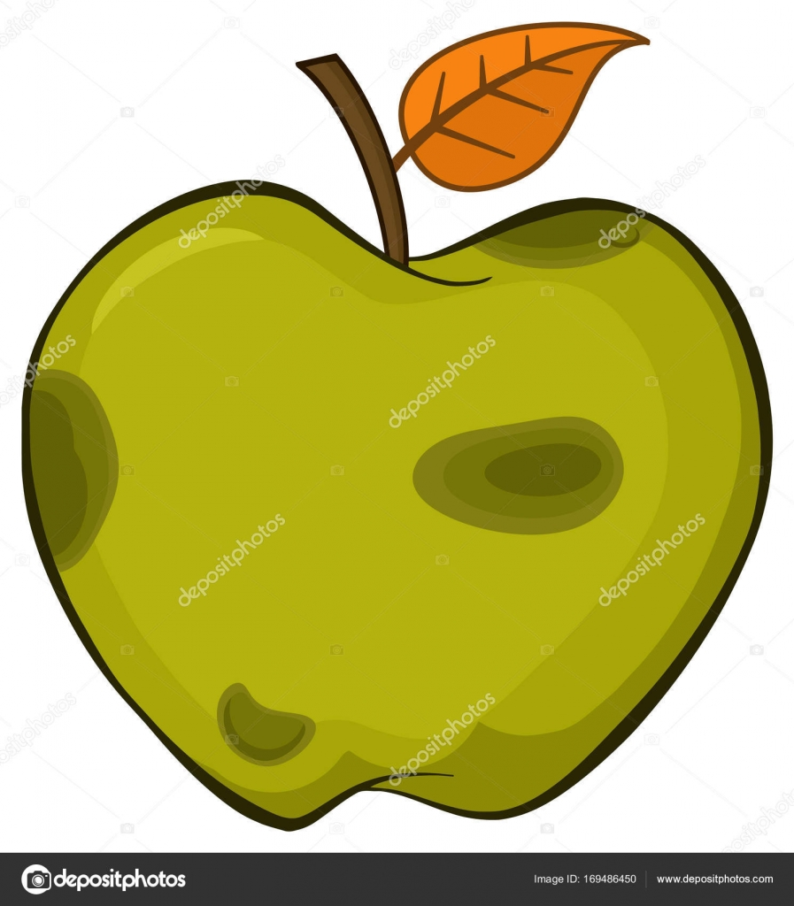 897x1024 Rotten Green Apple Stock Vector Hittoon