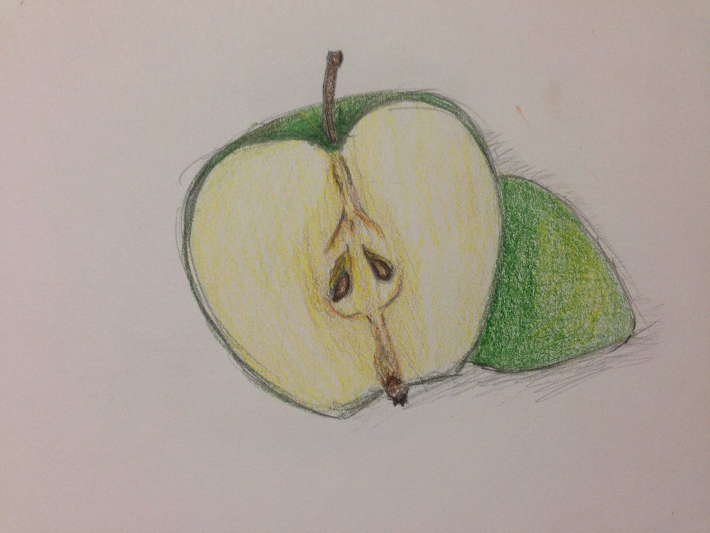 1024x768 Apple Drawing By Arielslr