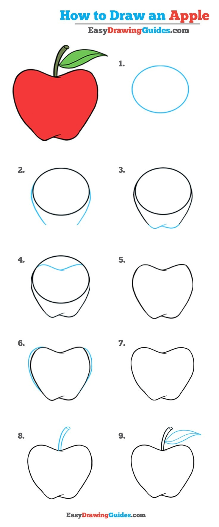 736x1770 How To Draw An Apple Really Easy Drawing Tutorial