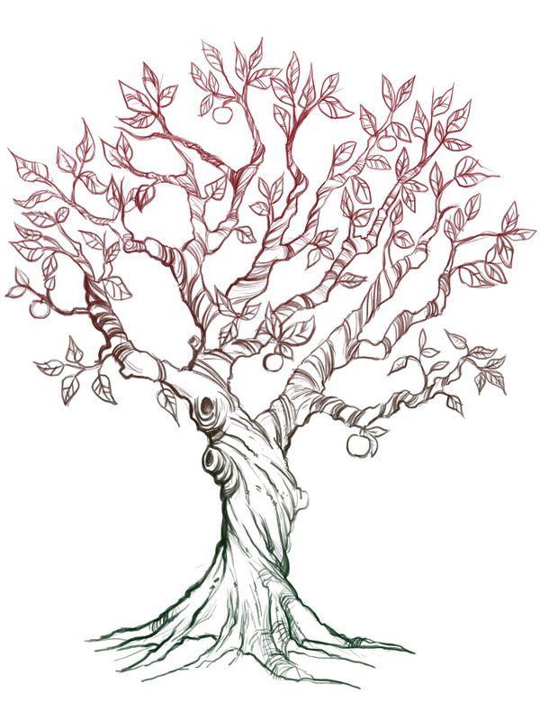 600x800 Apple Tree Tattoo Apples, Tattoo And Drawings