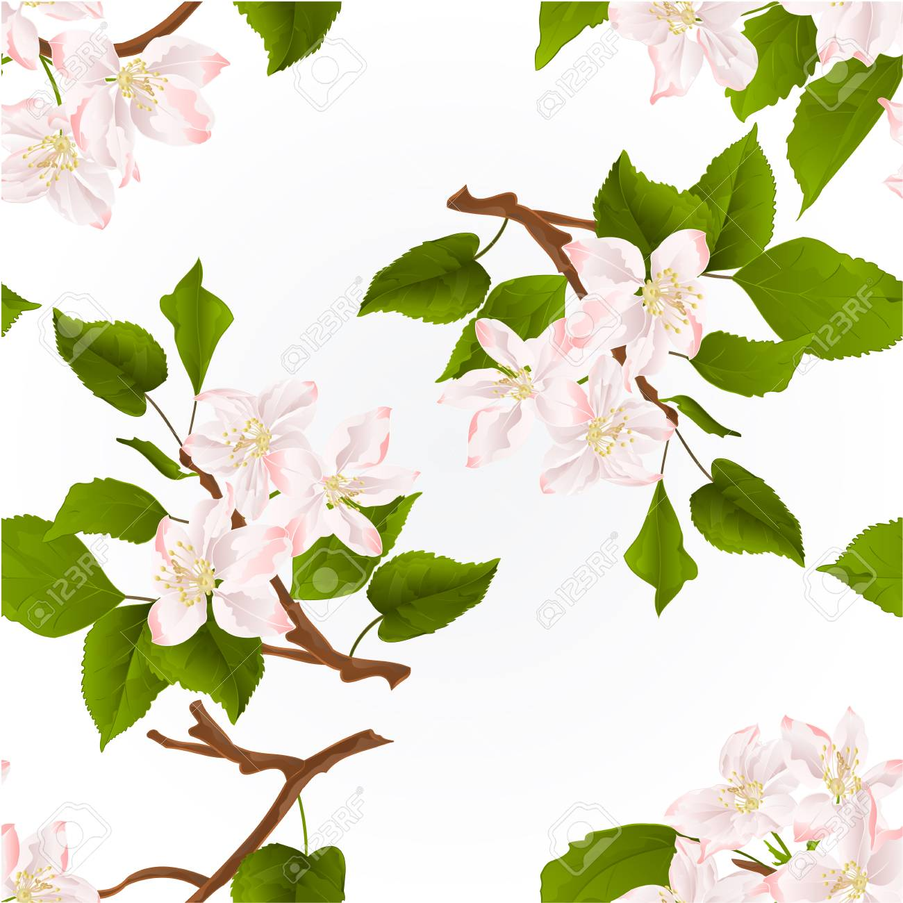 1300x1300 Seamless Texture Apple Tree Branch With Flowers Nature Background