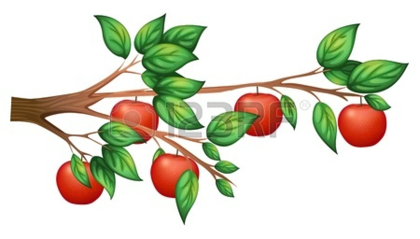 1350x768 Drawing Of Apple Tree Realistic Apple Tree Drawing Clipart Panda