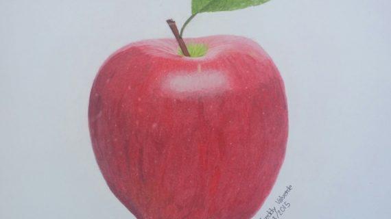 570x320 Pencil Drawings Of Apples