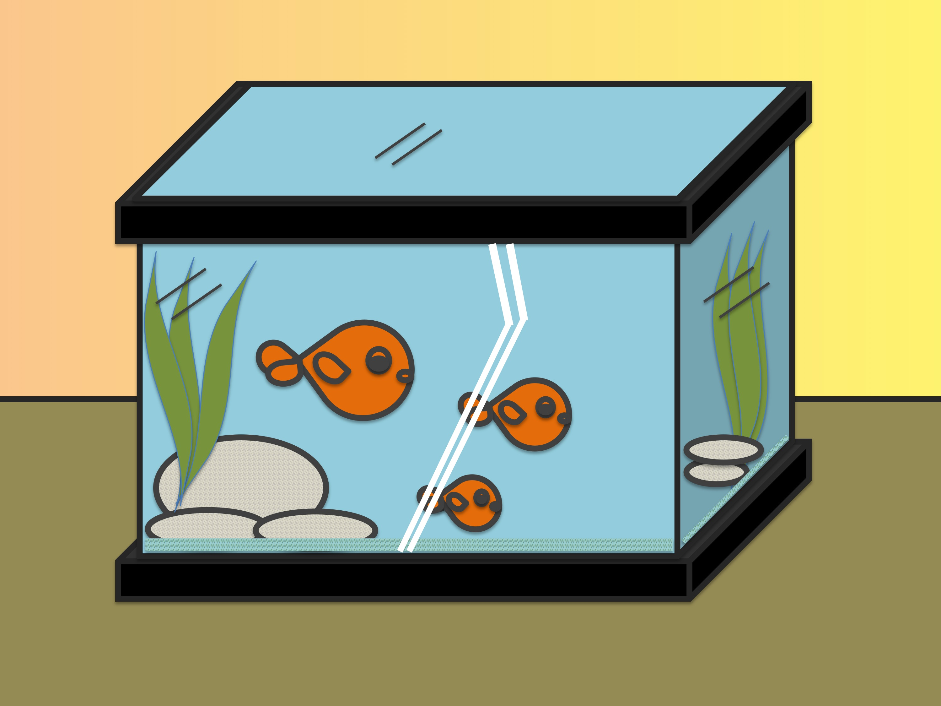 2998x2248 How To Draw Fish In A Fish Tank 7 Steps (With Pictures)