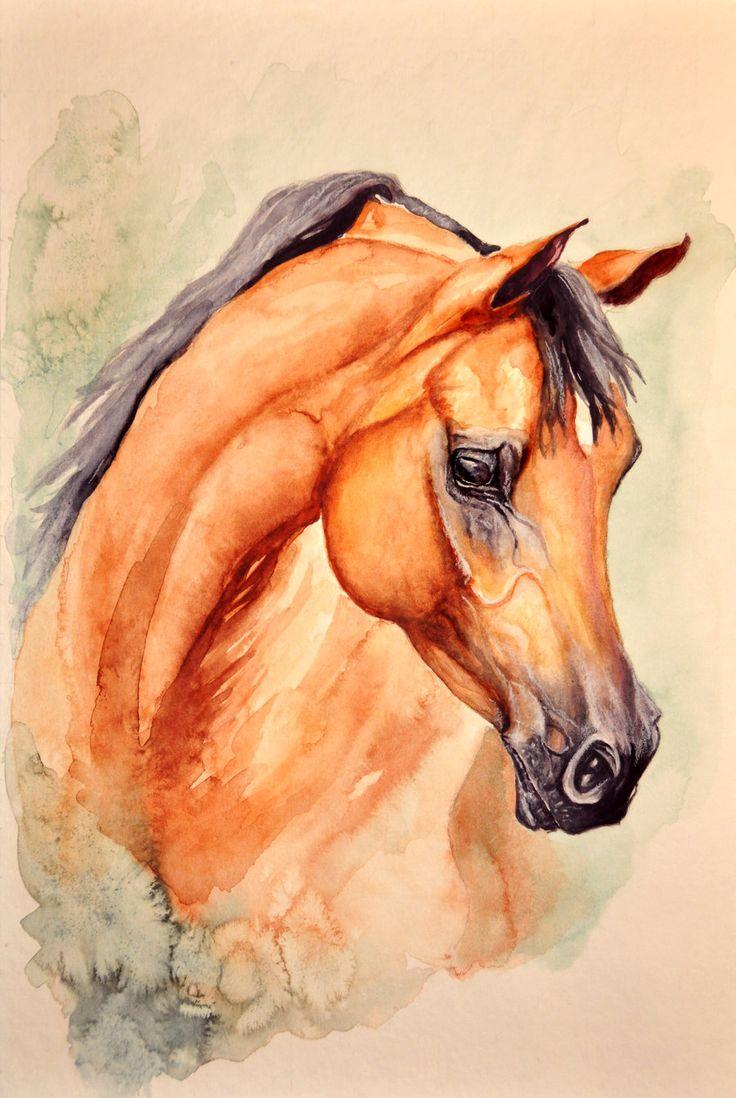 736x1098 Pencil Sketches Of Horses And Angels 376 Best Arabian Horse Art