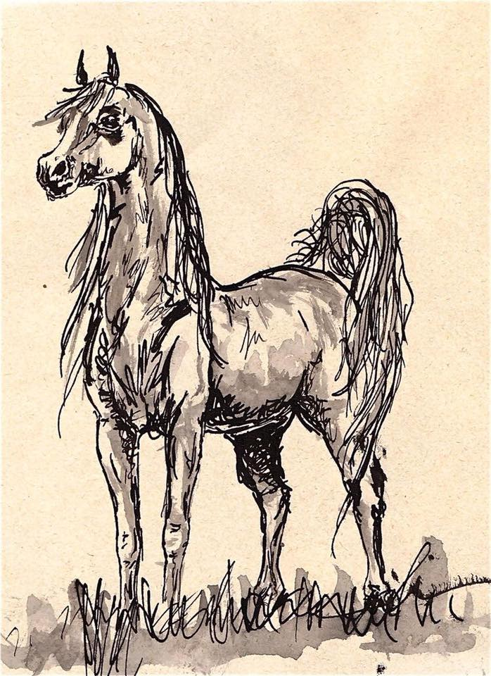 698x960 Pin By Eddie Mccain On Horses Hipster Art, Horse