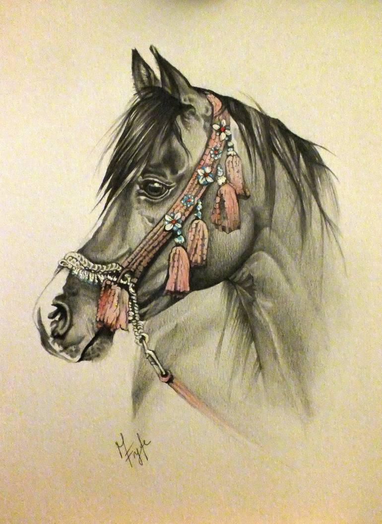 770x1056 Saatchi Art Arabian Horse Drawing By Marika Fyfe