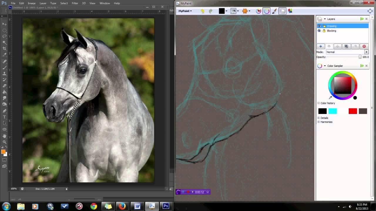 1280x720 How To Draw A Realistic Horse Head Arabian