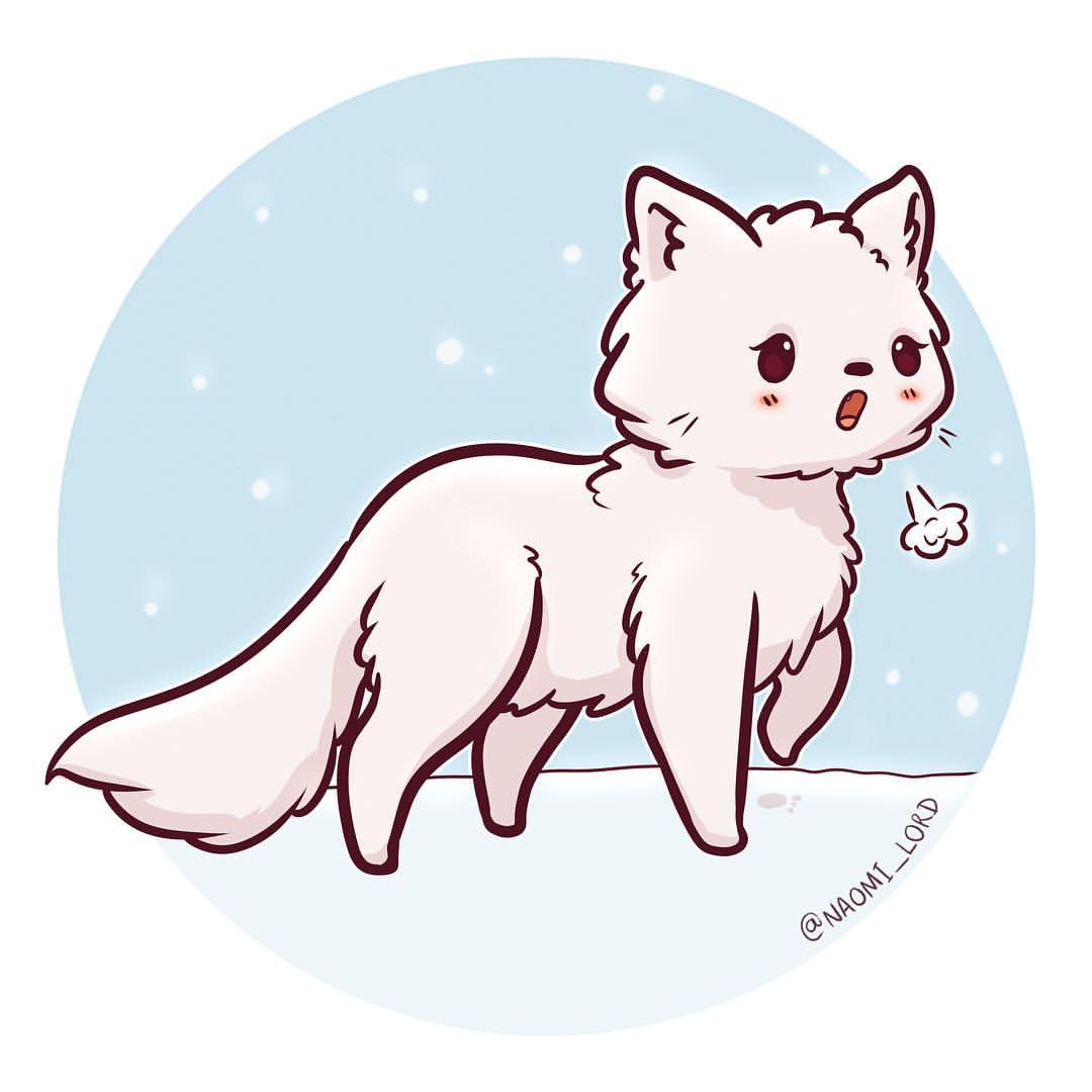 1080x1080 Doodled A Little Arctic Fox They'Re So Cute And Fluffy 3 Feel
