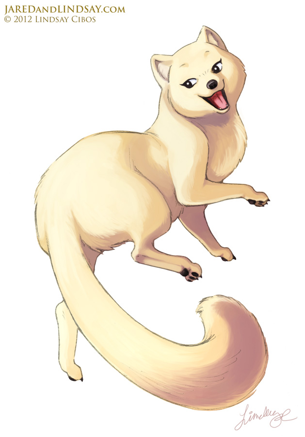 629x900 Lindsay Cibos' Art Blog How To Draw An Arctic Fox