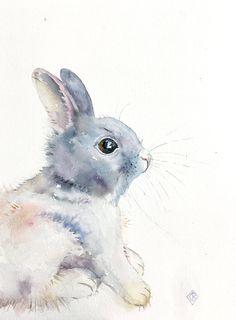 236x320 Arctic Hare