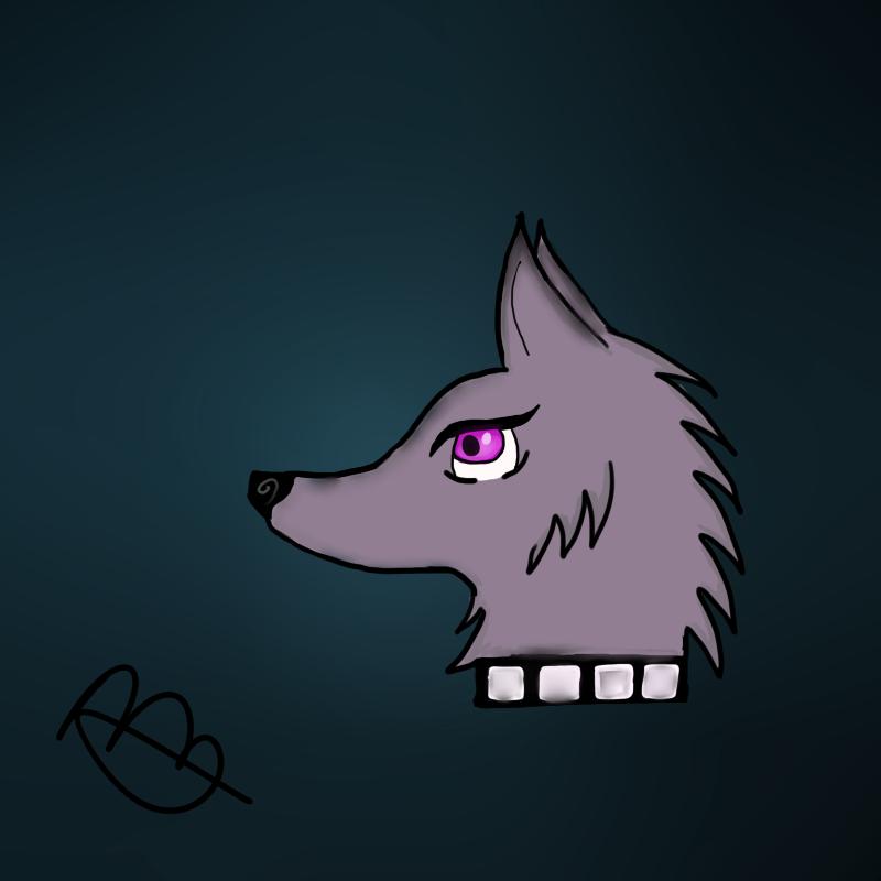 800x800 Animal Jam Arctic Wolf Drawing