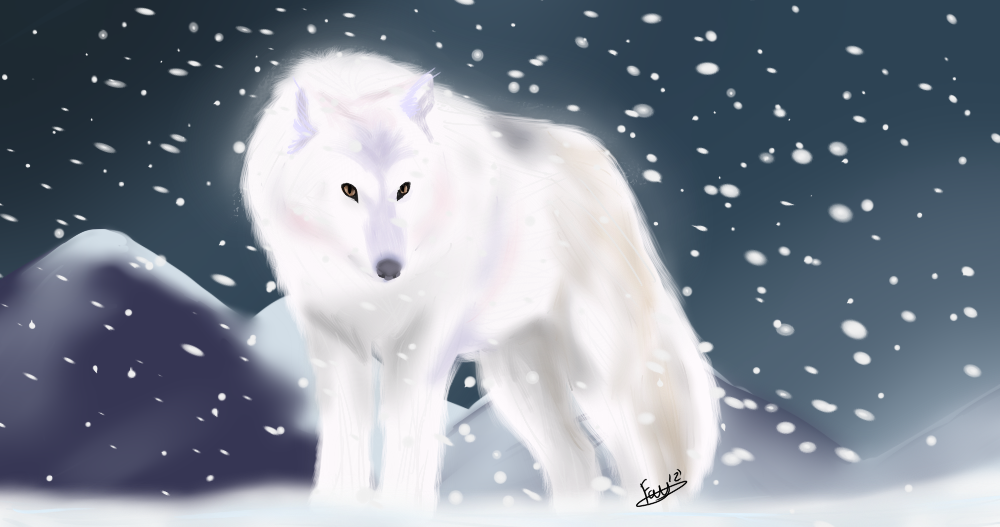 1000x527 Arctic Wolf By Feateon