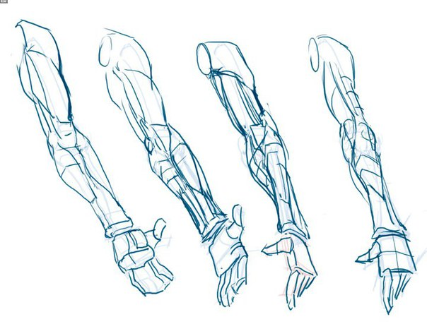 Arm Drawing at GetDrawings.com | Free for personal use Arm Drawing ...