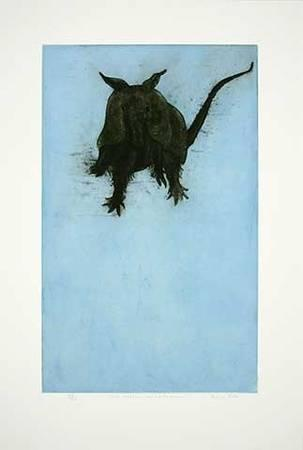 303x450 What Makes An Armadillo Bounce Limited Edition By Sonia Rollo
