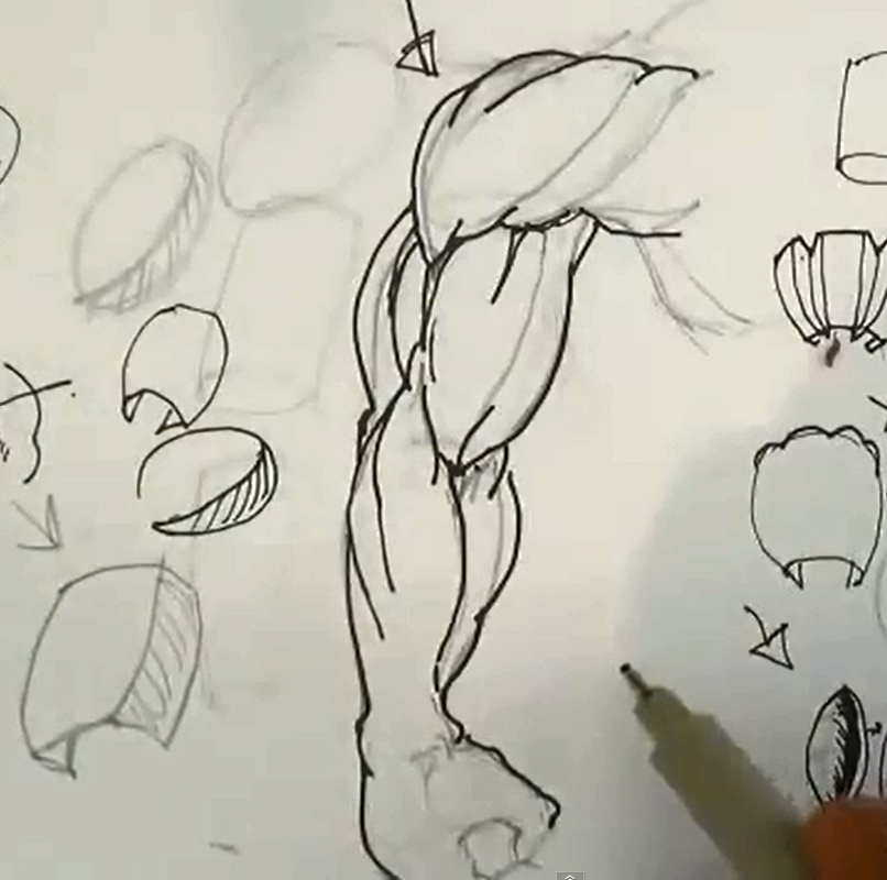 806x800 Comic Book Video Tutorials How To Draw Superhero Arms