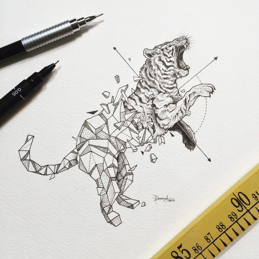 880x880 Lovely Half Geometrical Drawings Of Wild Animals Fubiz Media