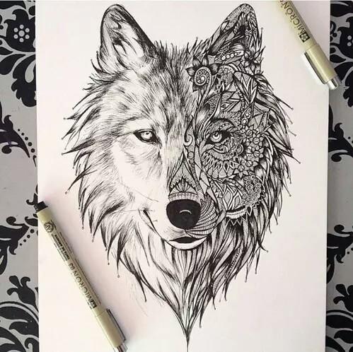 499x498 Wolf Draw