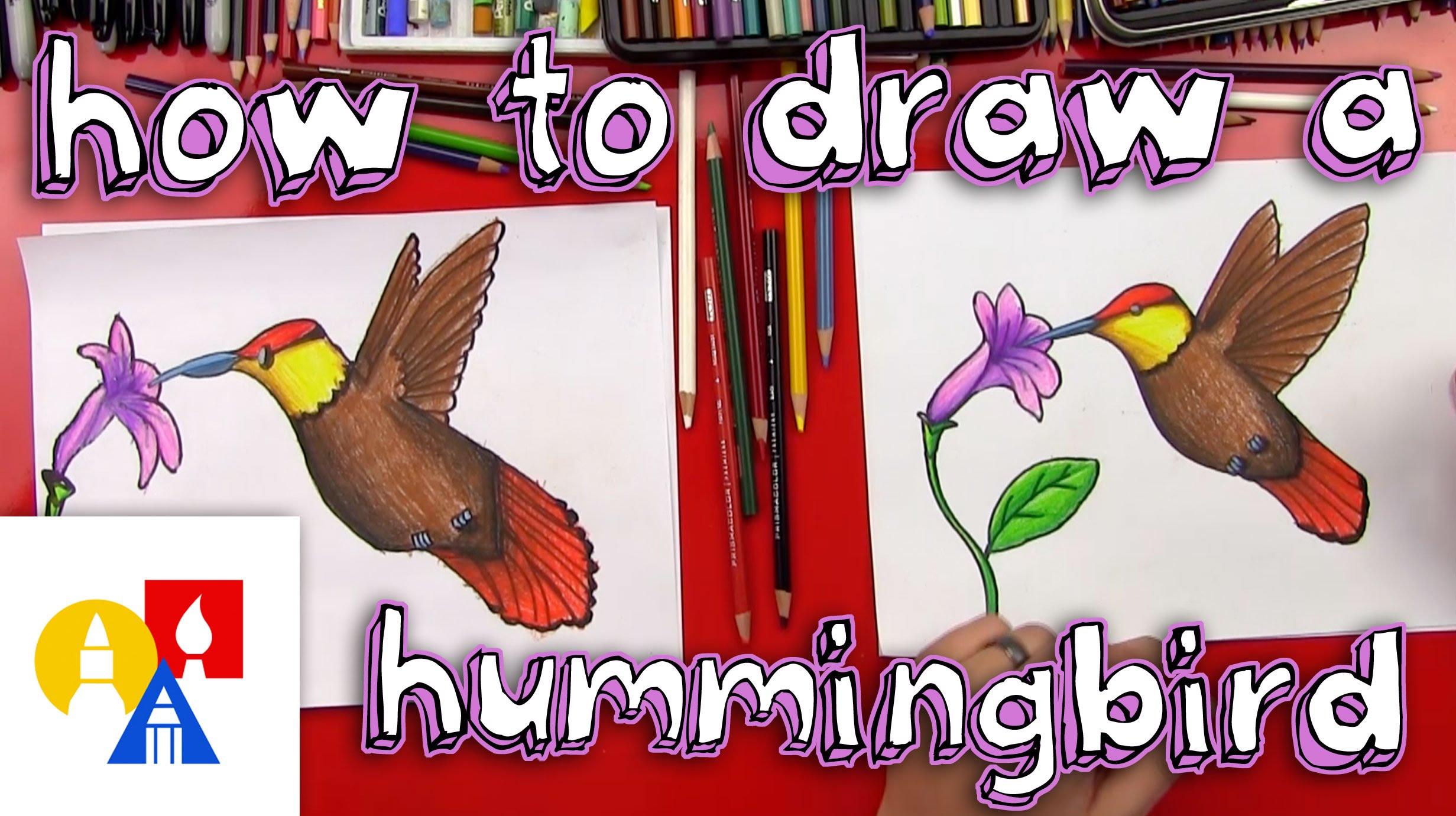 2463x1381 How To Draw A Hummingbird
