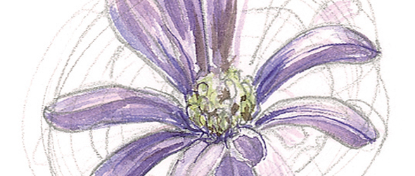 590x251 How To Paint Flowers In Watercolours