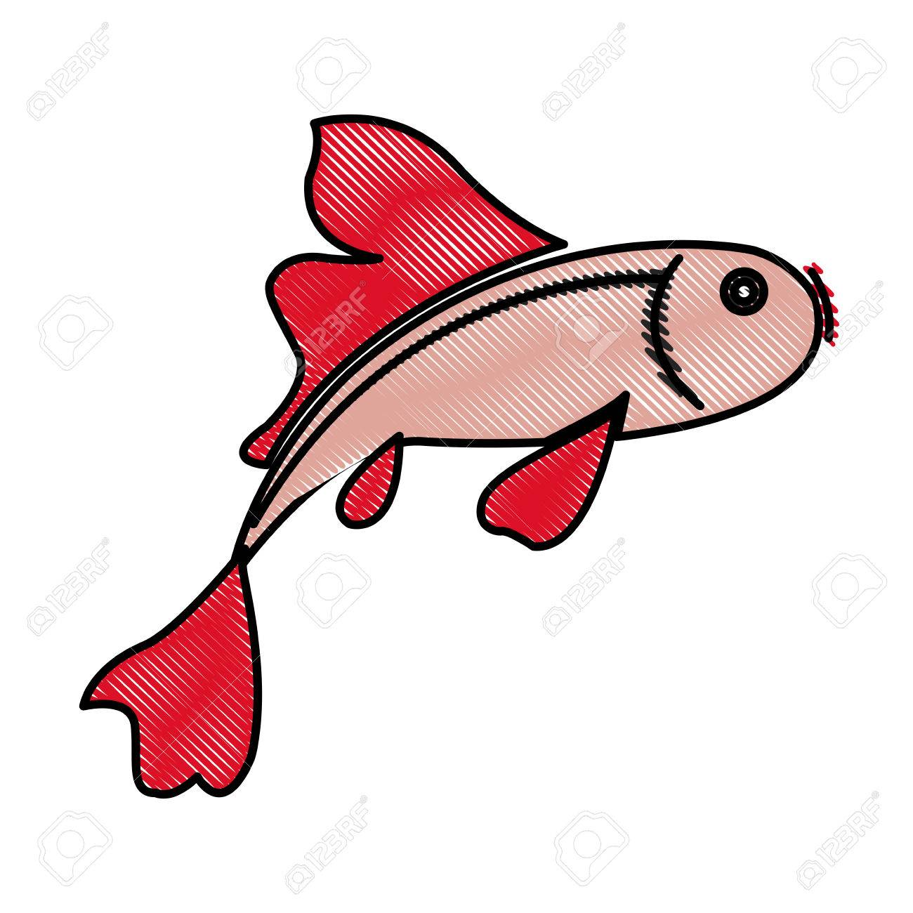 Asian Fish Drawing at GetDrawings.com | Free for personal use Asian ...