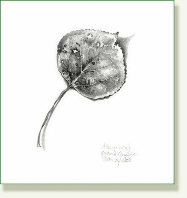 378x400 Simple But Beautiful Art Aspen Leaf, Aspen And Tattoo