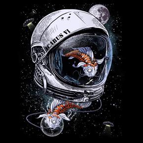 290x290 Astronaut Helmet Idea