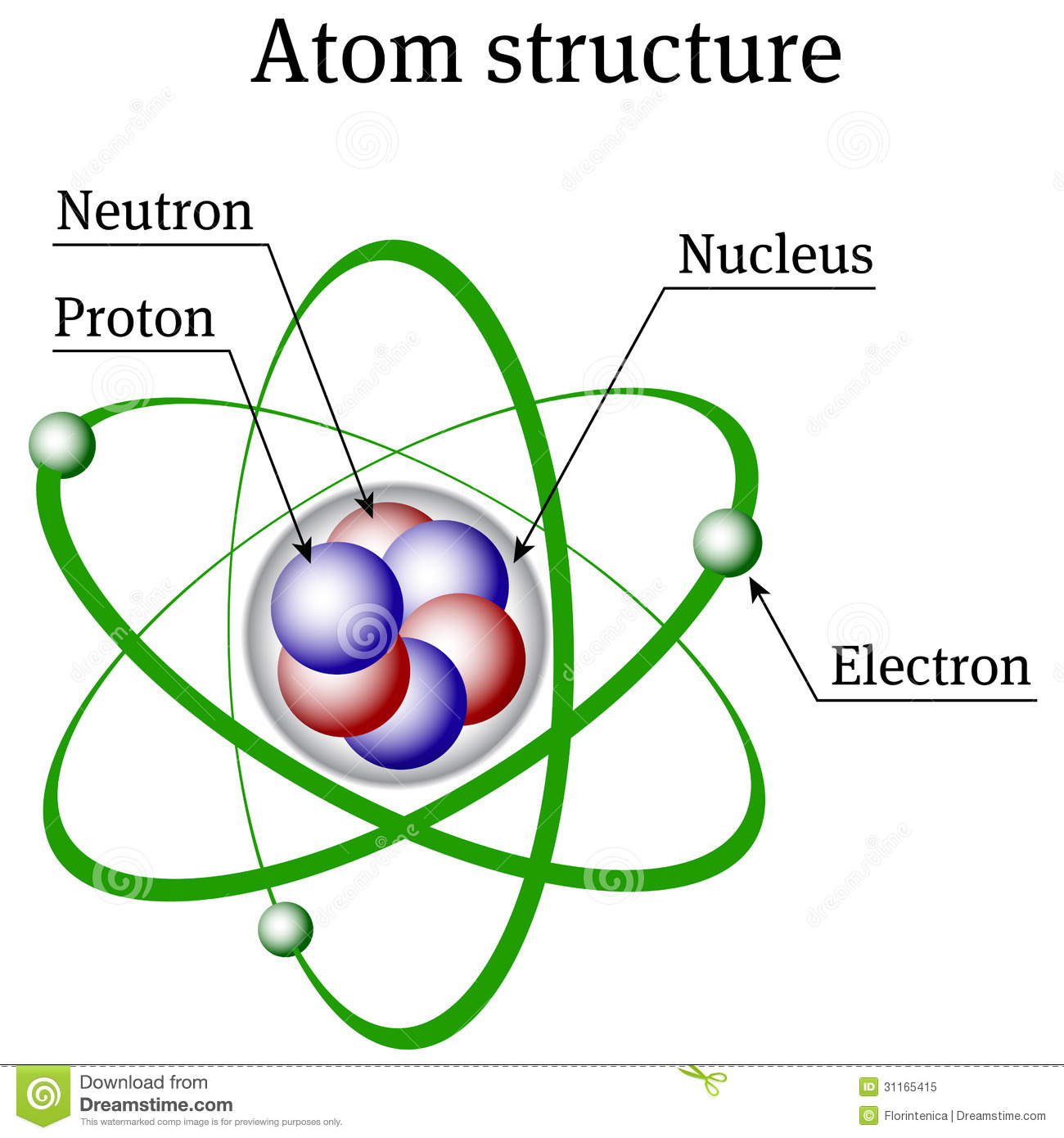 1300x1390 Drawing Of A Nucleus Nucleus Structure Drawing Atom Structure