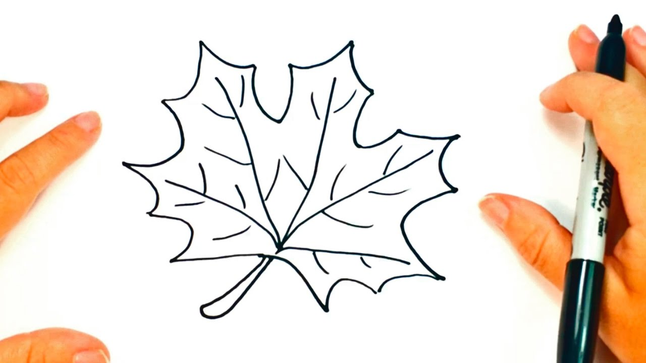 1280x720 How To Draw A Autumn Leaf Autumn Leaf Easy Draw Tutorial