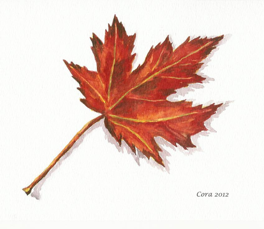 848x736 Journeys With Watercolors Another Autumn Leaf