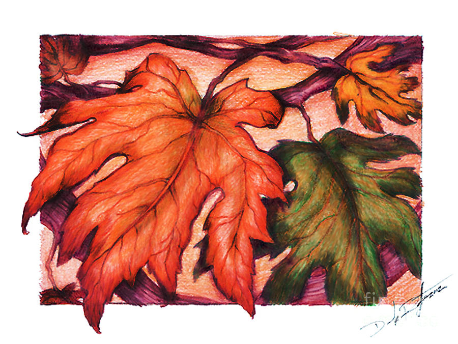 900x676 Autumn Leaves Drawing By Derrick Bruno Rathgeber