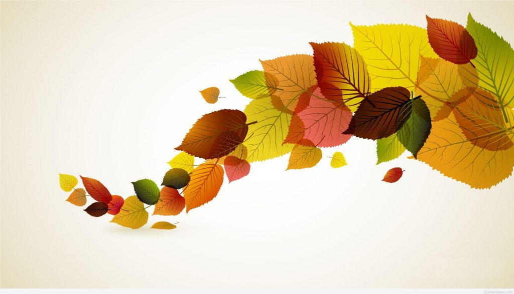 1024x587 Best Hd Minimalism Autumn Leaves The Vector Photos Drawing