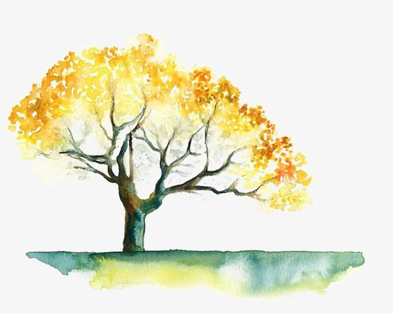 564x451 Autumn Tree, Drawing The Tree, Hand Painted, Autumn Elements Png