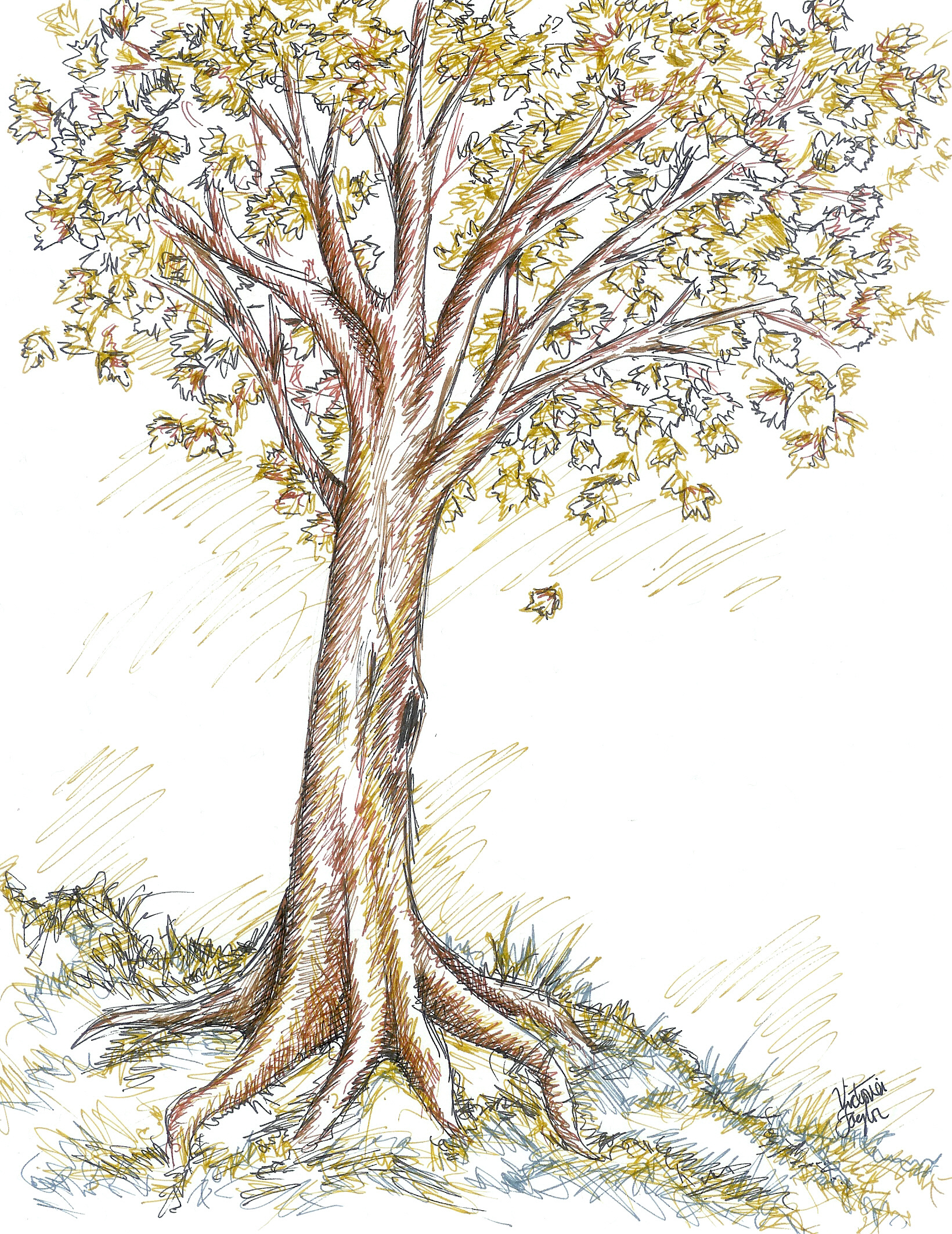 autumn tree drawing at getdrawings com free for personal use