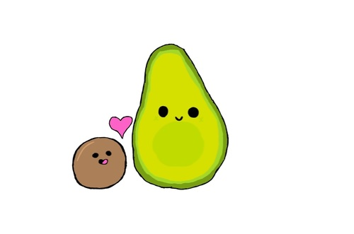 500x331 A Lovely Avocado Discovered By Charlotte On We Heart It