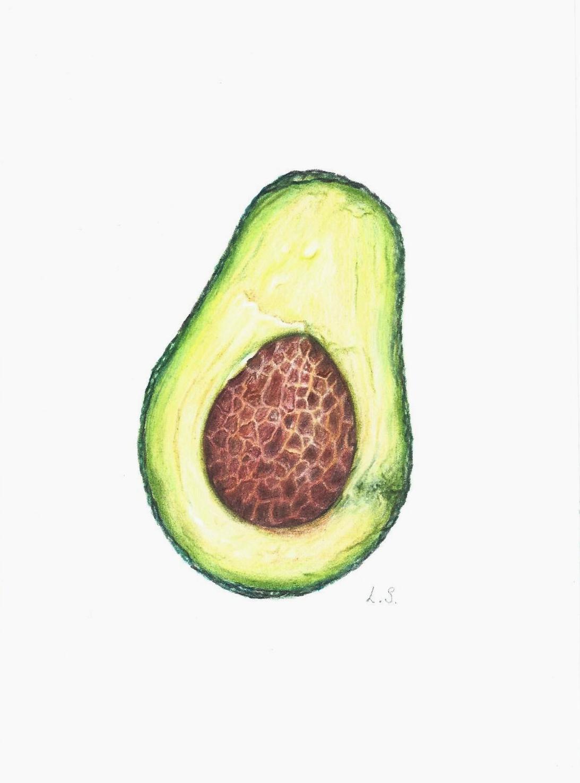 1093x1475 Avocado Colored Pencils Drawing Original Painting Fruit Art
